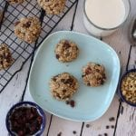 Breakfast Cookies (vegan + gluten-free)