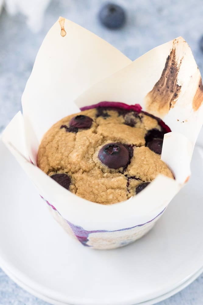 single blueberry muffin in muffin paper