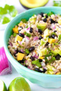 Brown Rice Black Bean Mango Salad