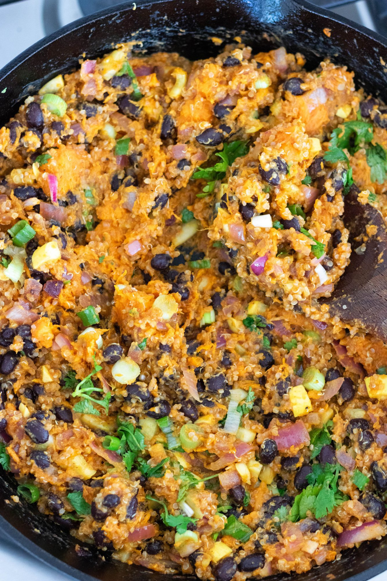 Vegan Enchilada Stuffing for Bell Peppers