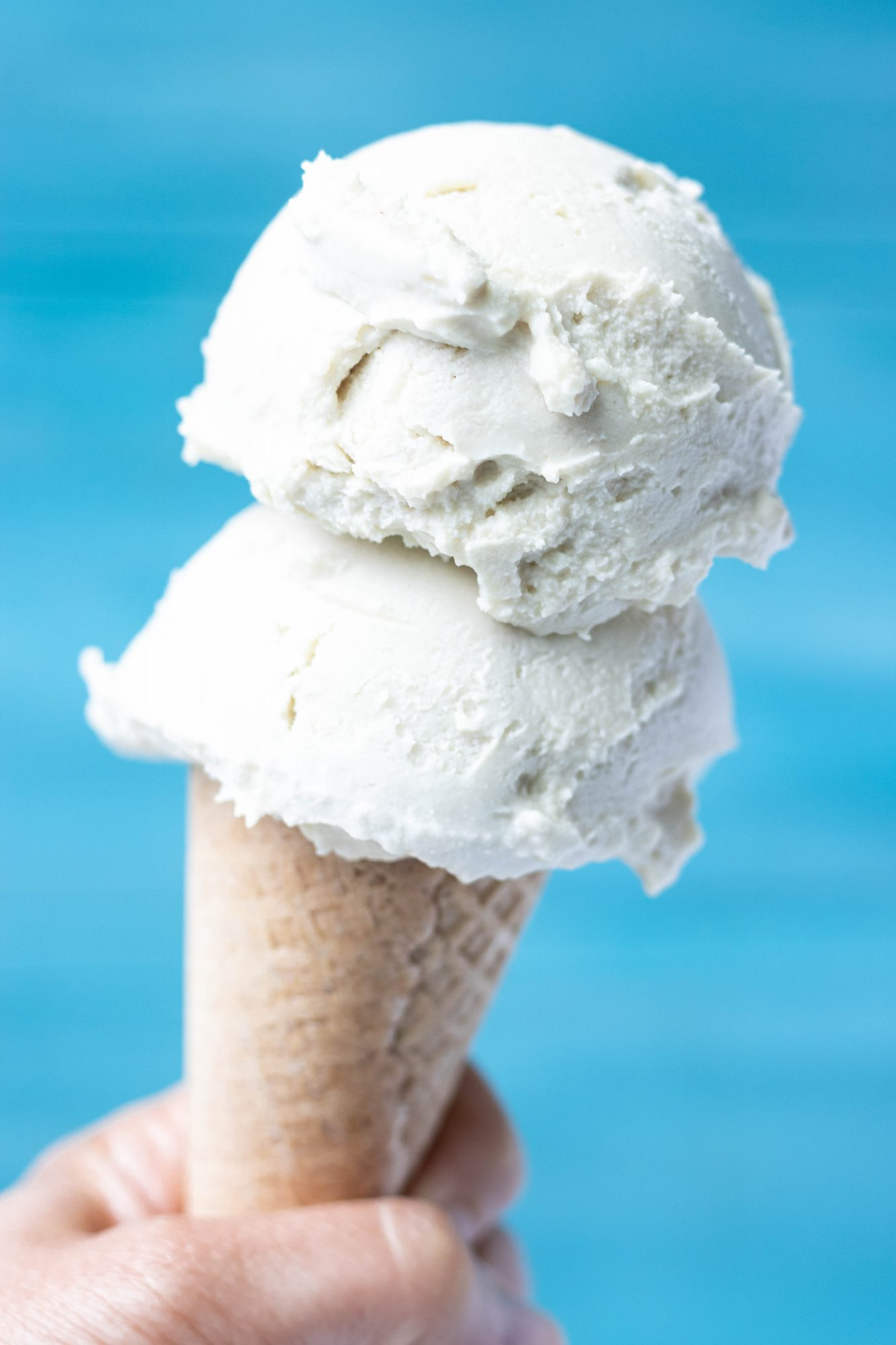 No-Churn Vegan Vanilla Ice Cream