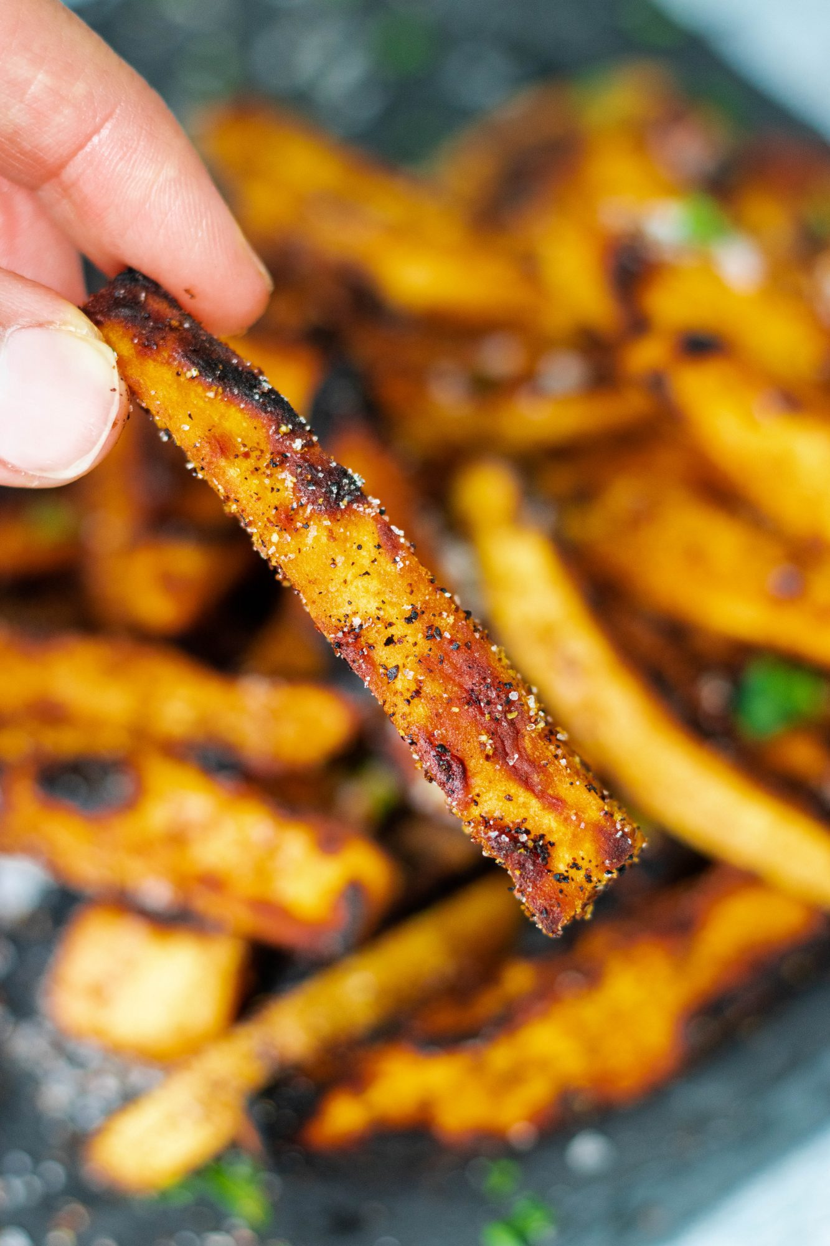 Grilled Seasoned Sweet Potato Fries