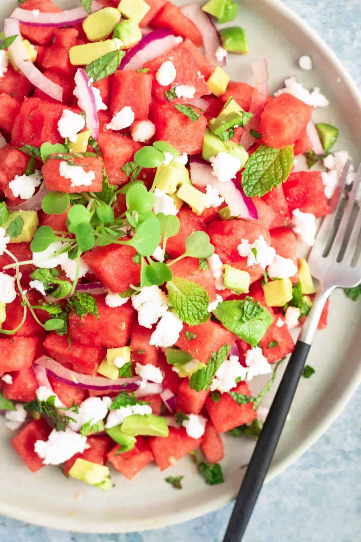 Vegan Watermelon Salad