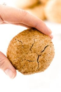 refined-sugar free snickerdoodles