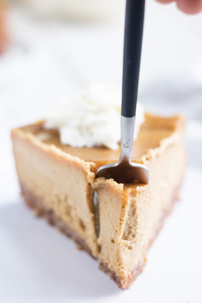 Vegan Thanksgiving Pumpkin Pie