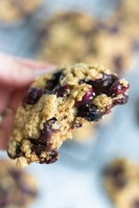 Vegan Oatmeal Cranberry Cookie