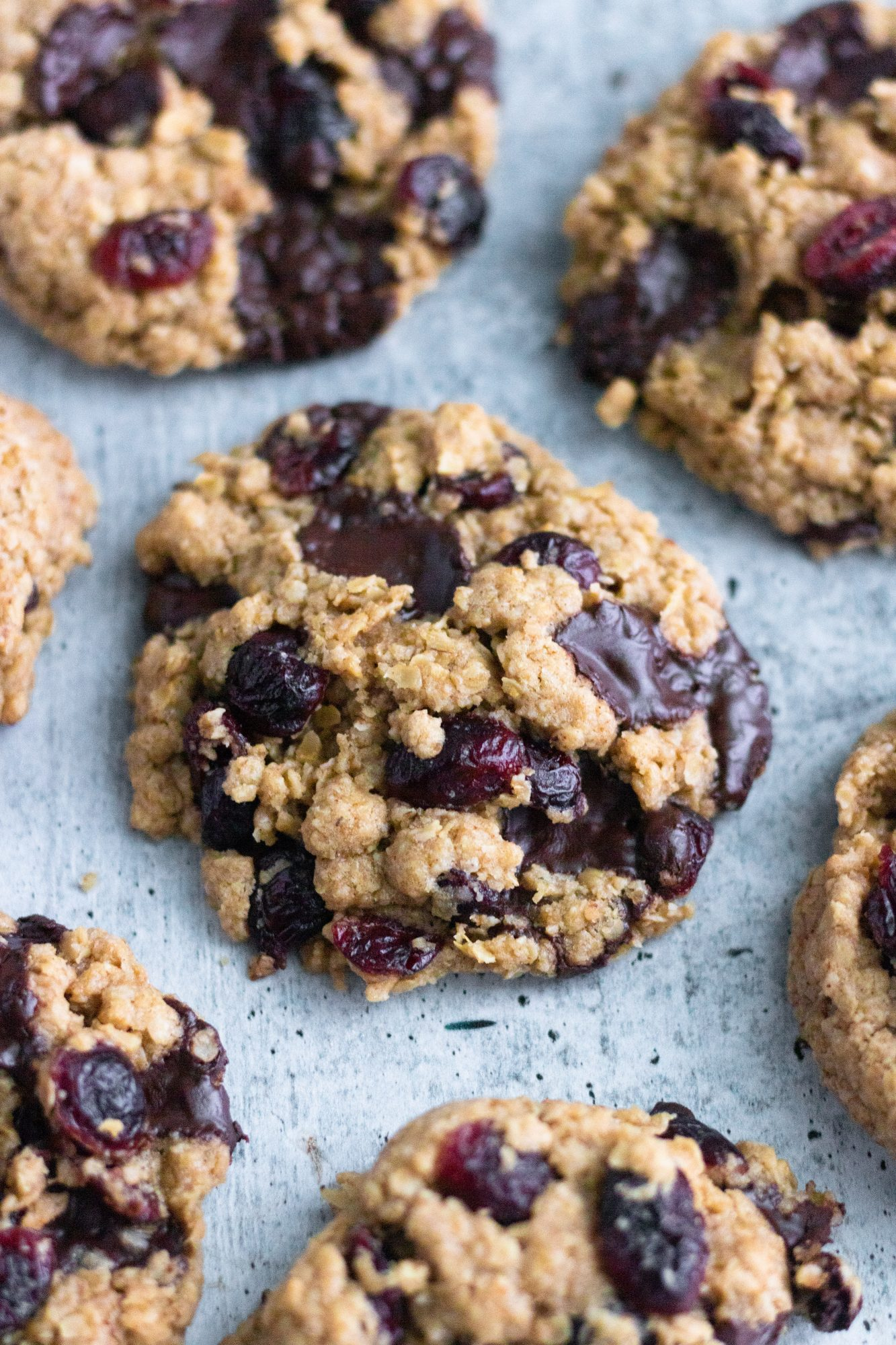 Cranberry & Chocolate Chunk Oatmeal Cookies