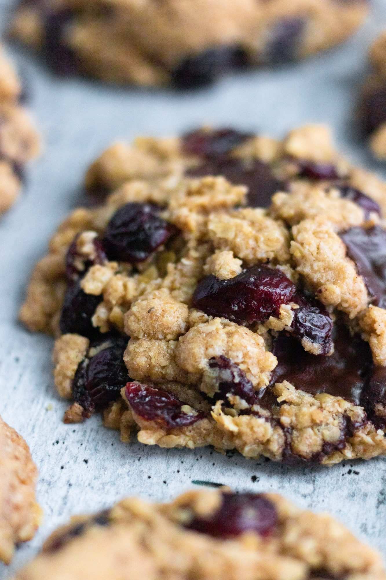 Vegan Cranberry Oatmeal Cookie