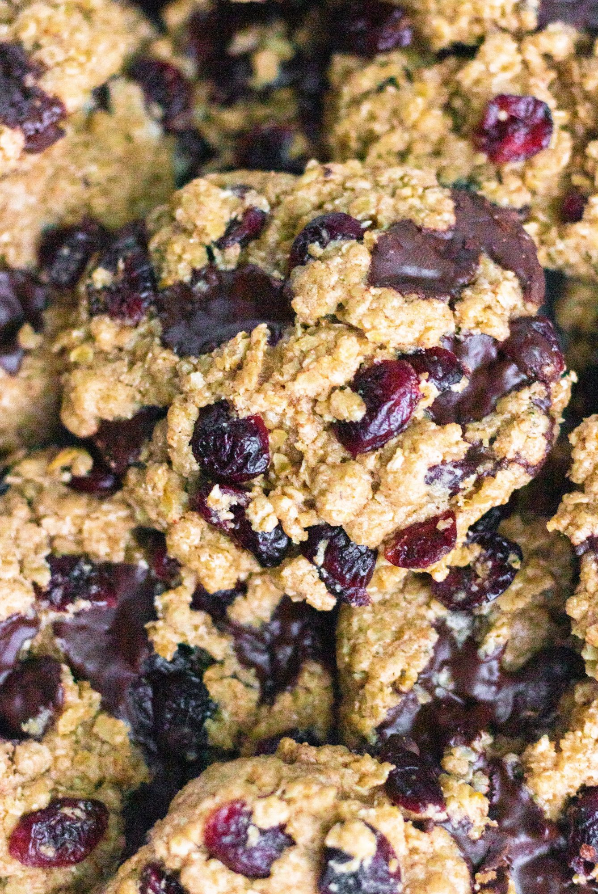 Vegan Cranberry Oatmeal Cookies