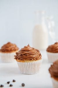 Vegan Cupcakes with Chocolate Frosting