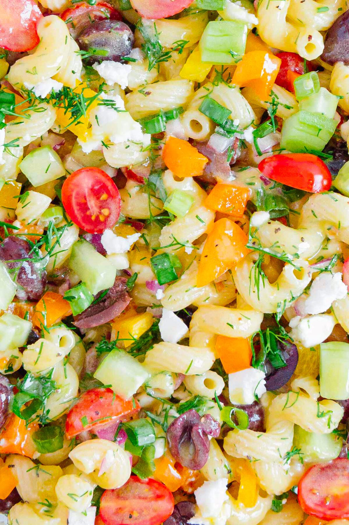 Close Up Greek Pasta Salad